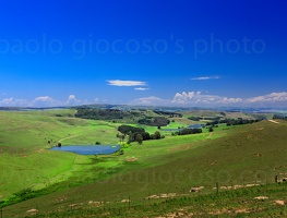 p.giocoso-1013-South Africa-003