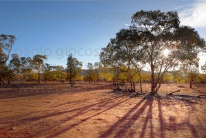 p.giocoso-0419-South Australia Landscapes-Flinders-063