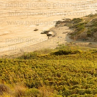 p.giocoso-0119-Wilds Beach West Sicily-049