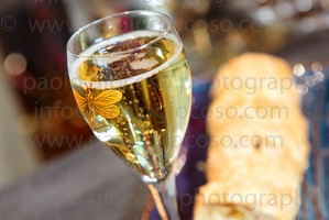 p.giocoso-0619-Troyes Champagne Aube-035