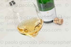 p.giocoso-0619-Troyes Champagne Aube-119