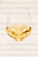 p.giocoso-0619-Troyes Champagne Aube-121